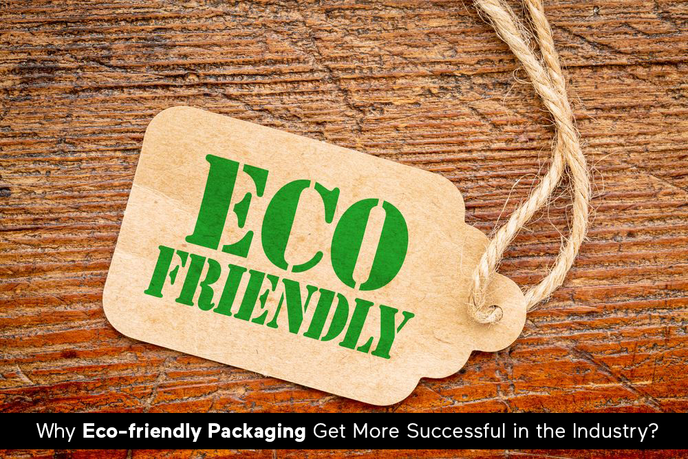 Why Eco-friendly Packaging Get More Successful in The Industry?